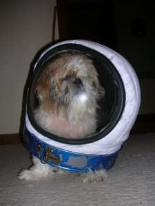 cassie in space